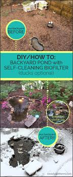 How To Build A Backyard Pond With A DIY Biofilter - Tyrant Farms Diy Backyard Waterfall Outdoor Fniture Design And Ideas Fantastic Waterfall And Natural Plants Around Pool Like Pond Build A Backyard Family Hdyman Building A Video Ing Easy Waterfalls Process At Blessings Part 1 Poofing The Pillows Back Plans Small Kits Homemade Making Safe With The Latest Home Ponds Call For Free Estimate Of 18 Best Diy Designs 2017 Koi By Hand Youtube Backyards Wonderful How To For