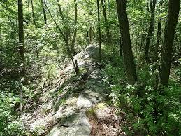 100 Wildcat Ridge File Trail Panoramiojpg Wikimedia Commons