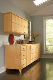 Omega Dynasty Cabinets Sizes 49 best dynasty cabinetry images on pinterest kitchen ideas