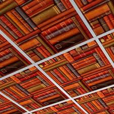 2x4 Suspended Ceiling Tiles Acoustic by Elegant Drop Ceiling Tiles 2x4 U2014 John Robinson House Decor