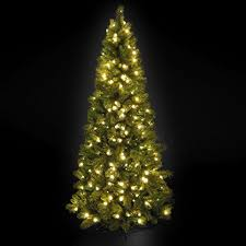 Pre Lit Pencil Christmas Trees Uk by Pre Lit Slim Manitoba Spruce Christmas Tree 2 1m 7ft Amazon