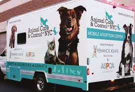 FINDING HOMES FOR NYC ANIMALS Amazoncom Aspca Kids Pet Rescue Club Too Big To Run Fenwick Keats Sponsors Mobile Adoption Van In Cooperation With Car Seat Cover For Dogs Walmartcom Animal Cruelty Mobile Unit Unveiled By Nypd Wpix 11 New York Vintage Photos Adorable Animals From The Aspcas Historical Archive Makes Record Seizure Of 600 Animals From Nc Nokill Shelter Untitled Clinic Harlem Mhattan United States Stock Closes Storied Forcement Nyc Petas Clinics Division Peta