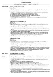 Download Database Manager Resume Sample As Image File
