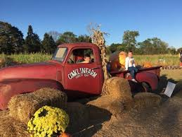 Pumpkin Picking Nj by Amazing Places To Go Pumpkin Picking In New Jersey Mommy University