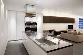 100 Gregory Phillips Architects 03contemporary Architect Mews House Kitchenlondon
