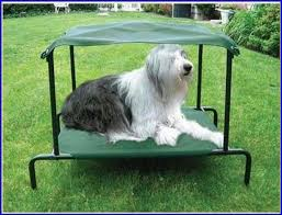 coolaroo dog bed full image for raised dog beds outdoor