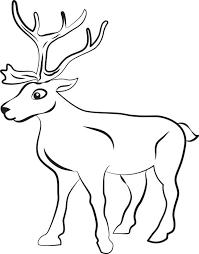 Christmas Baby Reindeer Coloring Pages Printable Page For Kids Free