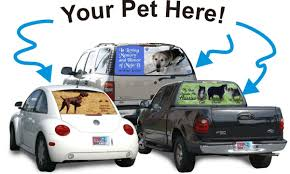 Your Pet Custom Rear Window Graphic | Exclusive Rear Window Graphic ... 2010 Lg Custom Truck Show Web Exclusive Photos Chevy Rear Window Camouflage Window Graphics For Trucks Amazoncom Mayitr Clown Jester Motorcycle Sticker Set For Motorbike Hoods Trunk Confederate Flag Tint Fresh 50 New Rear Kansas City Chiefs Decal Graphic Car Suv Camo Camowraps Rebel Guitar 17 Inches By 56 Compact Pickup Signs Designer Home Of The Free Because Brave Nostalgia Decals Vantage Point Harley Davidson 179562 At