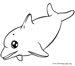 Dolphin Coloring Pages Copy Liam