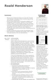Cfo Controller Resume Example