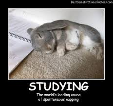 Students Demotivational Posters Images