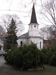 Kroger Christmas Tree Lights by Christmas Trees Follen Community Church