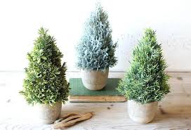 Topiary Trees Faux In Pots Set Of 3 Spiral With Lights