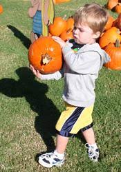 Pumpkin Patch Church Tallahassee by Pumpkin Patches Fun Ministry Raises Mission Funds Interpreter