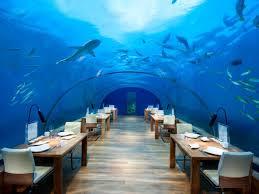 100 Water Discus Hotel Dubai 5 Unforgettable Underwater Hotels Bookingcom