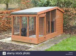 A Black Cocker Spaniel Dog And A Wooden Dog Kennel Outside In A ... Whosale Custom Logo Large Outdoor Durable Dog Run Kennel Backyard Kennels Suppliers Homestead Supplier Sheds Of Daytona Greenhouses Runs Youtube Amazoncom Lucky Uptown Welded Wire 6hwx4l How High Should My Chicken Run Fence Be Backyard Chickens Ancient Pathways Survival School Llc Diy House Plans Deck Options Refuge Forums Animal Shelters The Barn Raiser In Residential Industrial Fencing Company