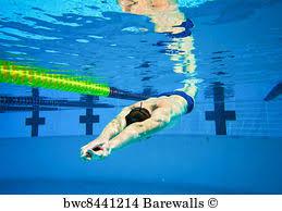 Swimming Pool Lane Marker Art Print Poster