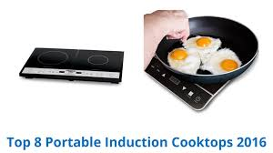 8 Best Portable Induction Cooktops 2016