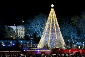Best Real Christmas Tree Type Canada by Watch The 2016 National Christmas Tree Lighting Live Stream Online