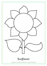 Sunflower Coloring Pages Colouring Page 2 For Preschoolers