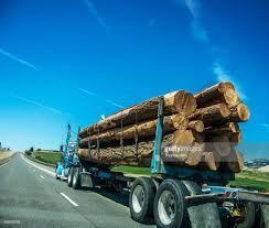 Lumber Truck Stock Photo | Getty Images Us Lumber Group Llc Atlanta Ga Rays Truck Photos Fshlyrestored Smithmiller And Pup Trailer Flatbed Delivering Wood With A Forklift Youtube Trucks Gallery Ad Moyer Logging Truck Wikipedia An Old Dump Is Positioned In A Gravel Yard With Box Raised Up Seymour At Parade Editorial Photography Image Of Md 140 Lumber Crash Carroll County Times Transport Forestry Industry Stock Dubell Showroom Cporate Hq Medford Nj 2013 Gsl Kidney Kamp Show 1948 Pete N Trailer Fitting Mgs Store