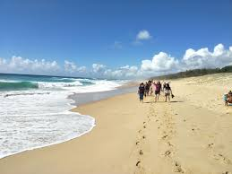 100 Currimundi Beach To Bokarina Walk And Beach Stroll Meetup