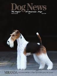 Dog News July 24 2015 by DN Dog News issuu
