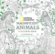 Saunders Veterinary Anatomy Coloring Book Second Edition Free Download National Geographic Magnificent Animals Hr Co