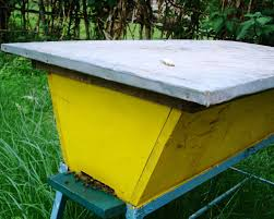 The Peace Bee Farmer: Top Bar Hives Top Bar Hive Management Bee Built Permapiculture The Natural Bkeeping Group Building A Kenyan Plans David Bench Top Bar Hive Design Wikiwebdircom Plans Free 28 Images Bee Journal Help And Scllating Blueprints For A Photos Best Inspiration Home Beehive Backyard Arbor For Advanced Odworkers Gold Star Honeybees Youtube Wood Project Ideas Where To Get