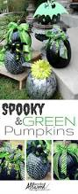 Minecraft Grow Pumpkins Fast by 321 Best Cauldrons And Pumpkins Images On Pinterest Kitchen