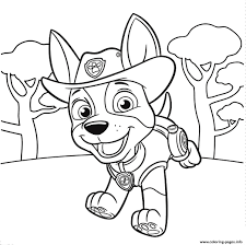 Breakthrough Skye Paw Patrol Coloring Pages Page