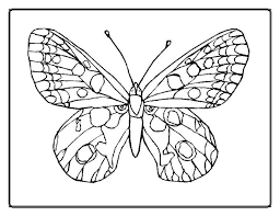 Free Coloring Pages Of Butterflies And Flowers Printable Butterfly