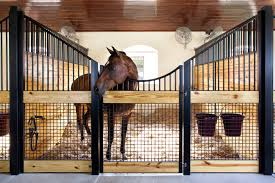 Horse Stall Design Ideas Cupolas And Horse Barn Doors Triton Systems Barns Stalls Different Types Of Stall Med Art Home Design Posters An Anatomical Basis For Visual Calibration The Auditory Space Door Kits The Best 2017 I Want Runs Like These On My Next Barn But They Will Open Up Into When To Treat Your Horse A Trophy Room Ones Own Wsj Riata Ranch Located In New Harmony Utah Stable Volvo C70 Turns 20 A Niche Car Made By Passion Car Usa 107 Best Future Ranch Images Pinterest Dream 143 Stable Barns Stalls Build Heartland 6stall