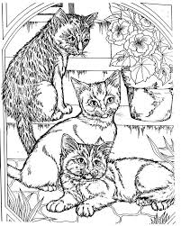 Adult Coloring Pages The Art Gallery Cool For Adults