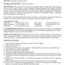 Title For Resume Example