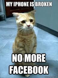 My iPhone is Broken no more sad cat blog quickmeme