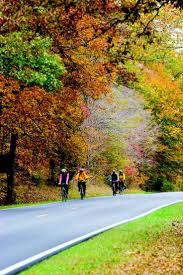 Natchez Trace Mississippi Start From The Beginning And Go To End