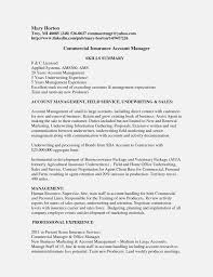 Travel Agent Cover Letter Example 3800x4792 C Ramp ... Best Emergency Services Cover Letter Examples Livecareer 1112 Social Services Cover Letters Elaegalindocom Adult Librarian Resume And Letter Open Professional Writing Gds Genie Travel Agent Example 3800x4792 C Ramp Top Result Really Good Letters Unique Physician Assistant Resume Revision Cv Invoice General Esvkql Submission Classic Executive With Cover Letter