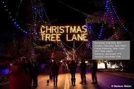 Christmas Tree Lane Alameda 2014 by Christmas Tree Lane Christmas Tree