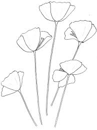 California Poppy Awesome Drawing Of Coloring