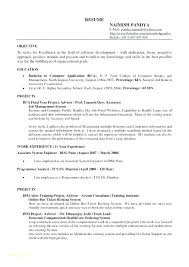 Driver Resume Sample Philippines Templates Google Truck Free With Example Docs Template