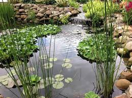 Tips For Raising Fish And Plants, And Keeping Algae Out, In ... Garnedgingsteishplantsforpond Outdoor Decor Backyard With A Large Fish Pond And Then Rock Backyard 8 Small Ideas Front Yard Ponds Backyards Wonderful How To Build For Koi Loving And Caring For Our Poofing The Pillows Project Photos Ideasnhchester Rockingham In Large Bed Scanners Patio Heater Flame Tube Beautiful Classical Design Garden Well Cared Indoor Waterfall Eadda Lawn Style Feat Artificial 18 Best Diy Designs 2017