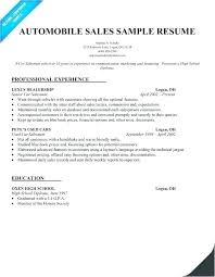Insurance Agent Resume Sample Sales Simple Free Life