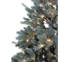 7 Ft White Pre Lit Christmas Tree by Buy Collection 7ft Pre Lit Christmas Tree Frosted At Argos Co Uk