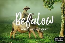 Befalow Rustic Font Example Image