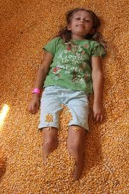 Macdonalds Ranch Pumpkin Patch Scottsdale by Macdonald Ranch Scottsdale Az Groupon