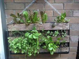 Creative Garden Pallet Uses