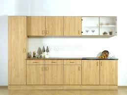 porte placard cuisine pas cher meubles de cuisine pas cher porte meuble cuisine ikea porte de