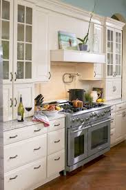 Premier Cabinet Refacing Tampa by Cabinet Doors Kitchen Painted Cabinets Ideas Colors With How To