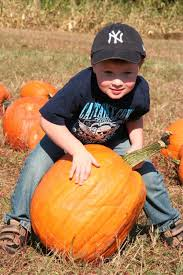 Pumpkin Picking In Freehold Nj by New Jersey Farms Jersey Family Fun